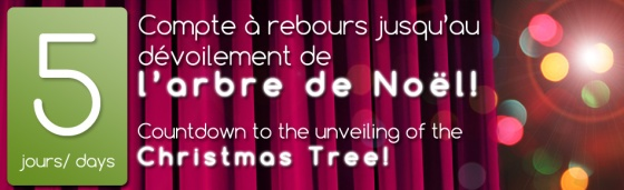 countdown to unveiling of christmas tree