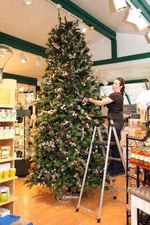 ALENA KIRBY christmas tree