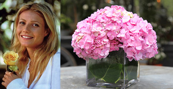 Flower Arranging by Vase on goop.com