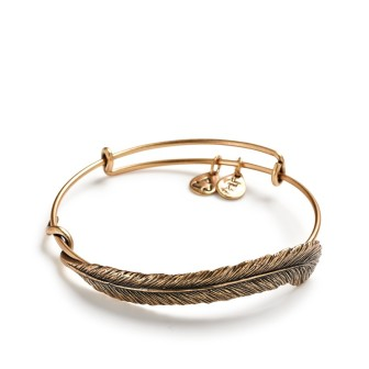 alex and ani spiritual armor plume