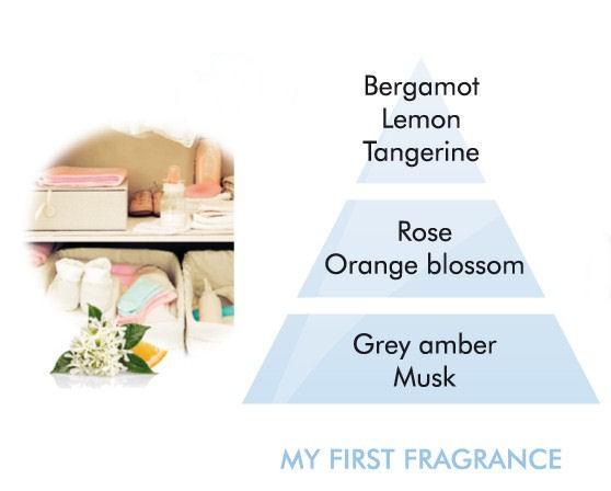 my_first_fragrance_pyramid